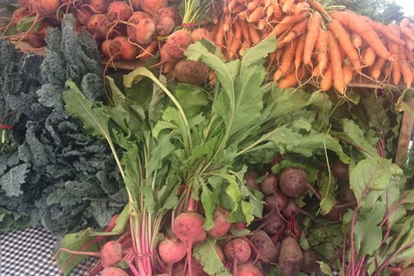 LA farmers market feature image