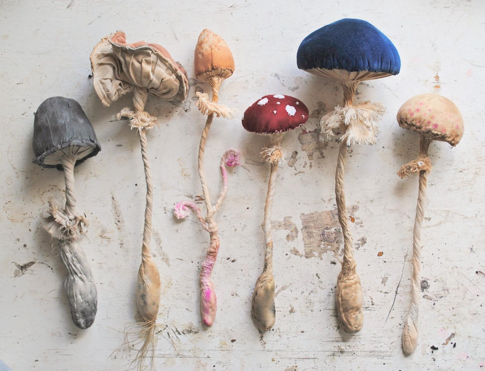 Выкройка грибов. Как сшить игрушку гриб своими руками / Мастер 24