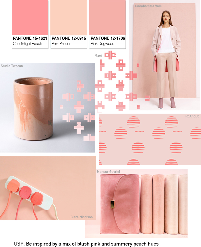 PANTONE COLOUR MOODBOARD TEMPLATE